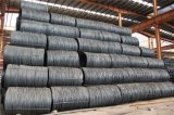 SAE 1008 Steel Wire Rod 5.5mm with Fast Shipment