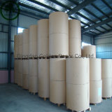 190g PE Coated Cupstock Paper, Raw Materials for Make Paper Cups