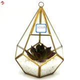 Wall Hanging Geometric Stained Glass Planter Boxes for Air Plant / Succulent Indoor Garden Plants