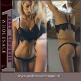 Top Quanlity Fashion Bra Sexy Shapewear Lace Underwear Set (TFQQ1014)