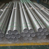 ASTM Stainless Steel Pipe (304, 316, 317) From China Supplier