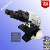 High Quality Educational Biological Microscope (BM1000)