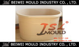 SPA Bath Tub Plastic Mould