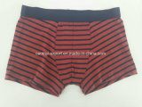 Yarn Dye Red Black Strip Cotton Children Underwear Boy Boxer Short Boy Brief
