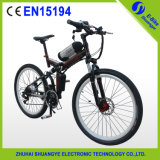 Folding Cheap Electric Mountain Bicycle Bike, Electric Motorcycle