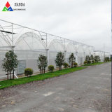 Agricultural/Commercial/Farm/Industrial/Garden/Vegetable Plastic Multi Span Film Poly Greenhouse with Hydroponic for Tomato/Cucumber/Peppers/Eco Restaurant