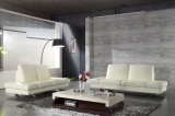 Modern Living Room Sofa with Genuine Leather Sofa (HC7336)