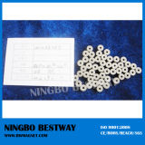 SmCo Ring Magnet/Permanent Samarium Cobalt Ring Magnets