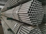 BS1387 Pre- Galvanized Steel Pipes Made in Tianjin