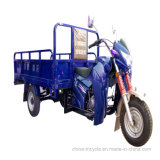 Water-Colled Gas Power Farm Three Wheel Cargo Motor Tricycle