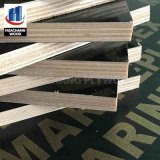 Hot Sales Black Film Faced Plywood Offering with Lowest Price
