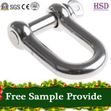 Rigging Hardware Stainless Steel316 D Type Shackle for Fastener
