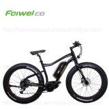 Central Motor Electric ATV Fat-Bike