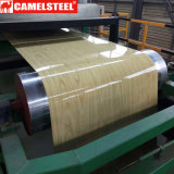 Color Coated Galvanized Steel Coil for Stainless Steel