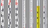 3m Aluminum Leveling Rod Leveling Staff (GLS-A33)