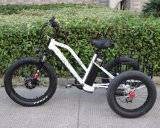 3 Wheel Electric Bicycle Tricycle with Small Cargo