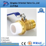 China Supplier New Style Ball Valves Weight Factory Price Good Reputation with High Quality