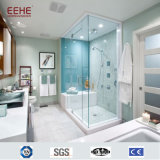 China Supplied Shower Room Doors with Stainless Steel Frame