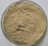 Health Care Product Supplement Natural Chasteberry Extract Powder Holy Blackberry Powder Extract Total Flavone 20% 30%