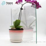 Topo Magic Mirror Float Glass/Magic Mirror Display for Bathroom Mirror or Exhibition (S-F7)