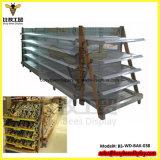 Gond Mark 5 - 5 Module Metal / Timber 1420mm Display Equipment