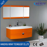 Wall Mounted PVC Commercial Bathroom Vanity Units