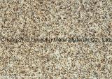 Pattern PPGI Steel Coil/ Sheets (Marble, Woorden)