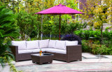 Wicker Sofa Outdoor Rattan Furniture Chair Table Wicker Furniture Rattan Furniture for Wicker Furniture (Hz-BT101)