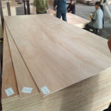 Commercial Plywood with Fsc for UK Market