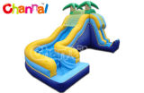 Tropical Side Load Water Slide Inflatable Bb233