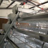 Best Price Battery Layer Chicken Cages with Automatic System