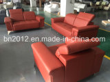 New Design and Hot Selling Leather Sofa Set (SBL-9811)