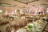 Wedding Furniture Rose Gold Metal Leather Banquet Dining Chair