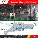 best shipping agent service Australia from Guangzhou logistics cheap rate