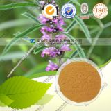 FDA Registered Manufacturer Supply Natural Motherwort Extract