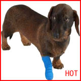 Medical Dog Bandage
