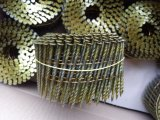 Screw Shank Coil Nail for Wooden Pallet of Size 2.5mm X 65mm