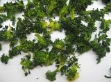 Dehydrated Broccoli with High Quality