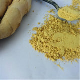 Strong Taste and Cheapest Ad Ginger Powder (80-120 mesh)
