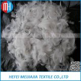 High Quality & Cheap Price 2-4cm Washed White Goose Feather