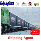 Export Agent DDP Sea Shipping Air Cargo Freight Forwarder to Tajikistan/Germany/Spain Railway/Train FedEx/UPS/TNT/DHL Express Shipping Agents Service Logistics