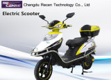 800W Brushless Adult Electric Scooter, 2 Wheels Electric Motorcycle
