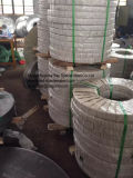 Hot Rolled / Cold Rolled / Finished Stainless Steel for Making Pipes (SUS201)