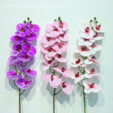 Factory Plastic Latex Orchid Real Touch Artificial Orchids Flower