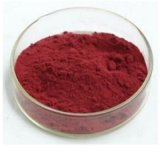 Natural Plant Extract Manufactory Good Price 98% Lycopene with Free Sample and Fast Delivery