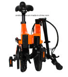 "Factory Supply 16"" Rear Motor Drive Electric Folding Bike with Pedal Assistance"