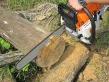 52cc Reasonable Price Small Chainsaw Machines Chain 5210
