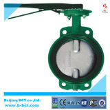 High Performance Cast Iron EPDM Seat Worm Gear Wafer Type Butterfly Valve Bct-Wbfv-02