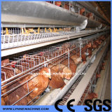 Galvanized Cage Equipment for Breeding Egg Layer Hens with Drinker/Feeder