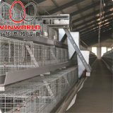 a Frame Automatic Broiler Cage in Poultry House with Best Price